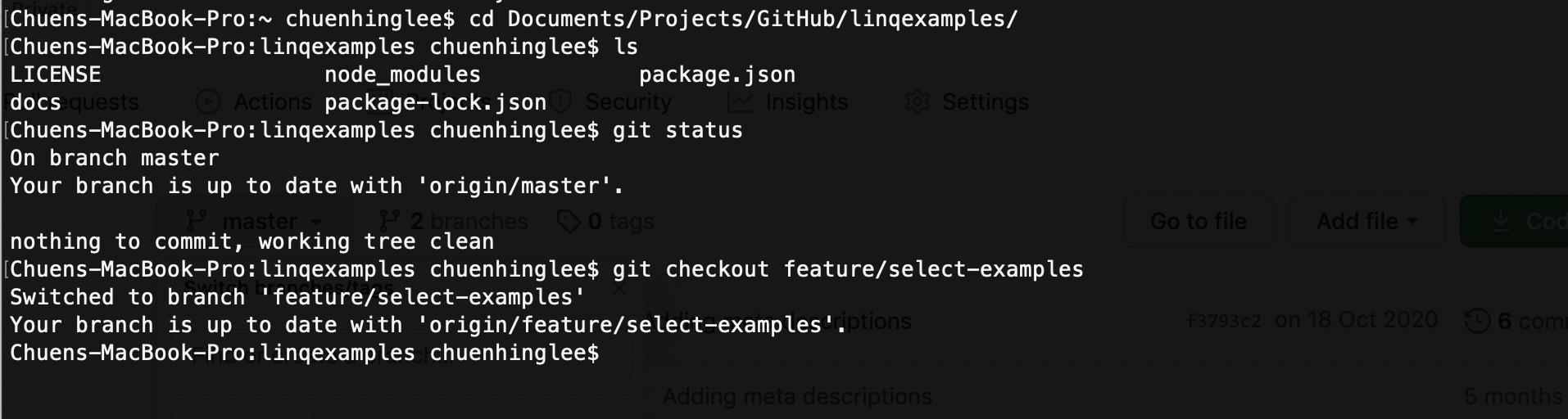 mac-standard-terminal